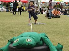 カエル水難救助競争